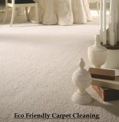 Cape Town Carpet Cleaners