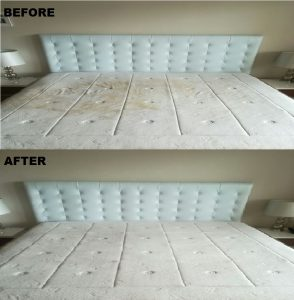 AUCC Contact Information Mattress Cleaning